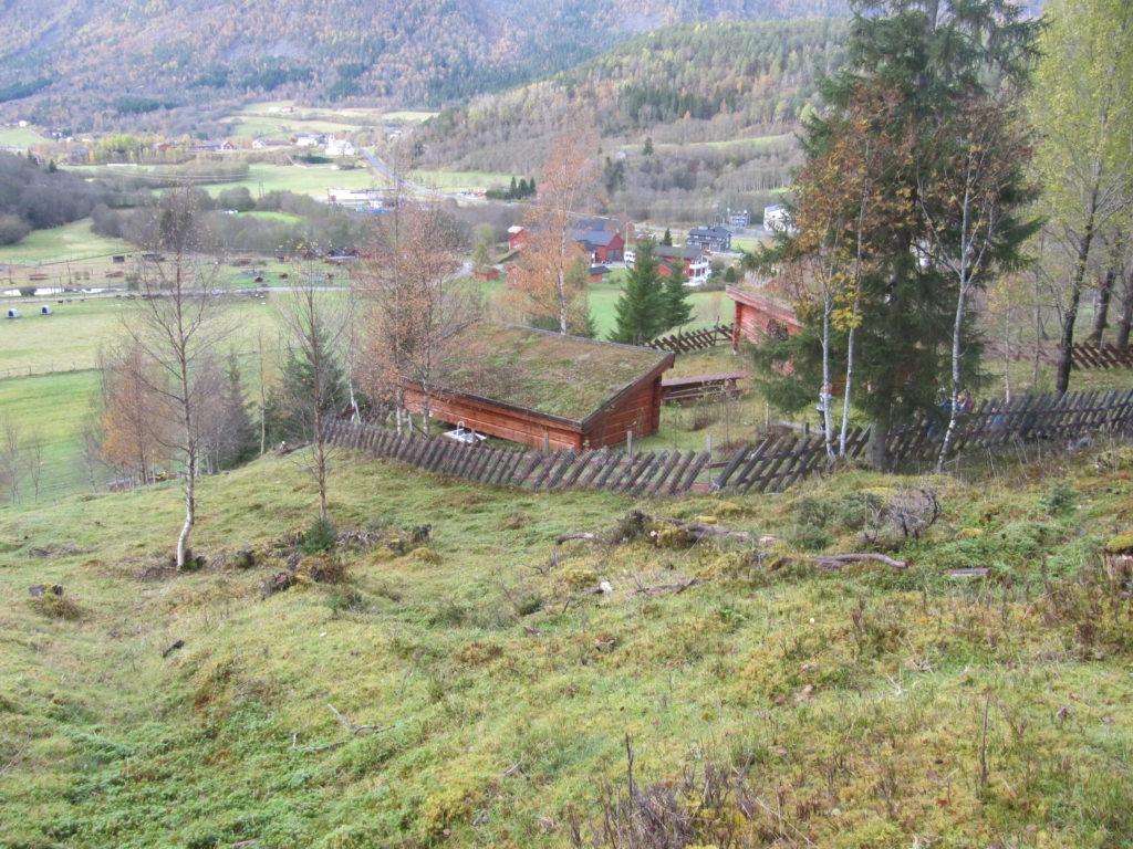Gapahuken med utsikt til gården